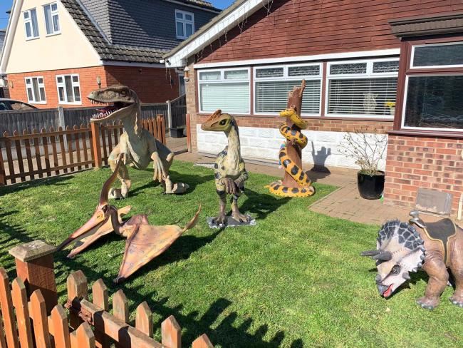 The dinosaur collection missing the Dilong paradoxusdinosaur.  See SWNS copy SWCAdino: A man has been left baffled after a 'one-of-a-kind' dinosaur was stolen in the middle of the night. The theft happened just before midnight last night (Saturd