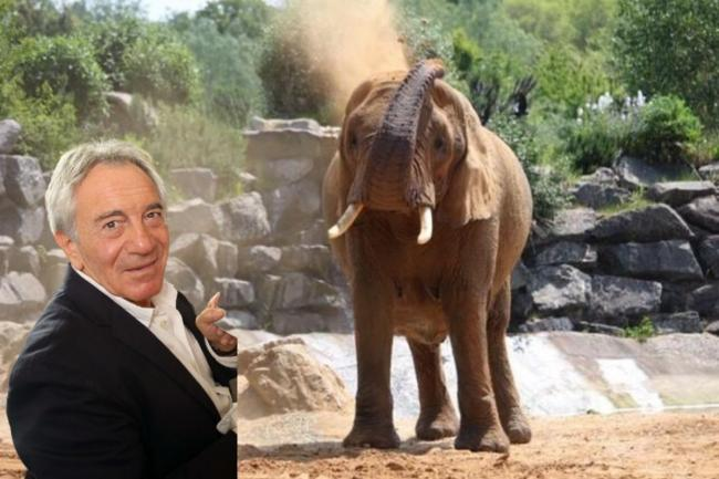 MD of Colchester Zoo Dr Doninique Tropeano said he had been forced to write to all zoo passholders