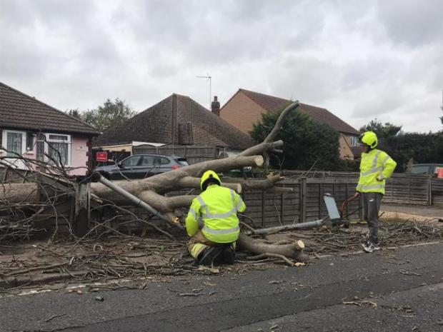 Gazette: Delays - a fallen tree caused delays to traffic in Clacton