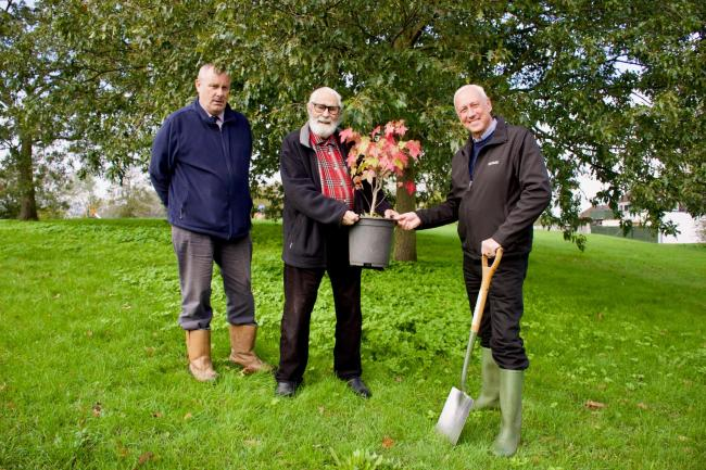 Michael Talbot planting trees at Rush Green in Clacton with Trevor Mills and Alan Coley