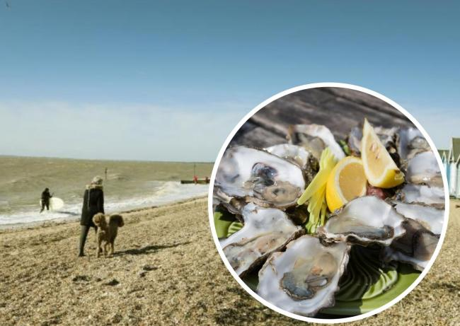 The England's Coast project has taken a look at some of the incredible seafood experiences you can enjoy across the country