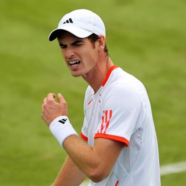 Novak Djokovic believes Andy Murray (pictured) should avoid showing he is injured on court