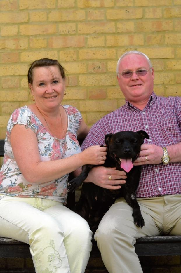 Paula and Mark Oliver with their rescue dog, Staffordshire bull terrier, Amy