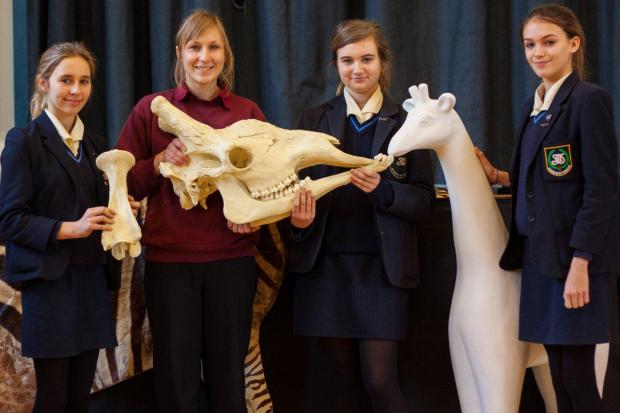 Girls from St Mary's School, in Colchester, meet their Stand Tall giraffe