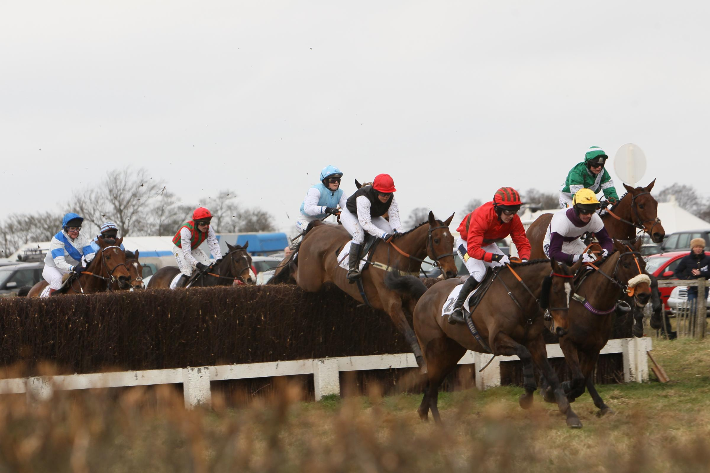 Point to point racing in Marks Tey in March last year