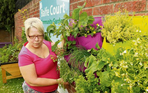 Amanda Stannard in the Balfe Court community garden