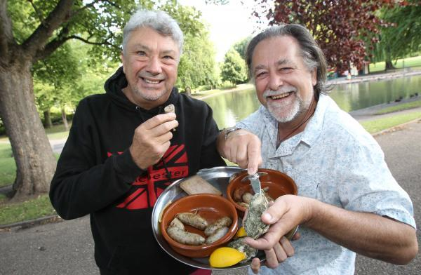 Festival to reveal the Colchester sausage ...made with oysters!