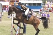 Garrison blow for riding school