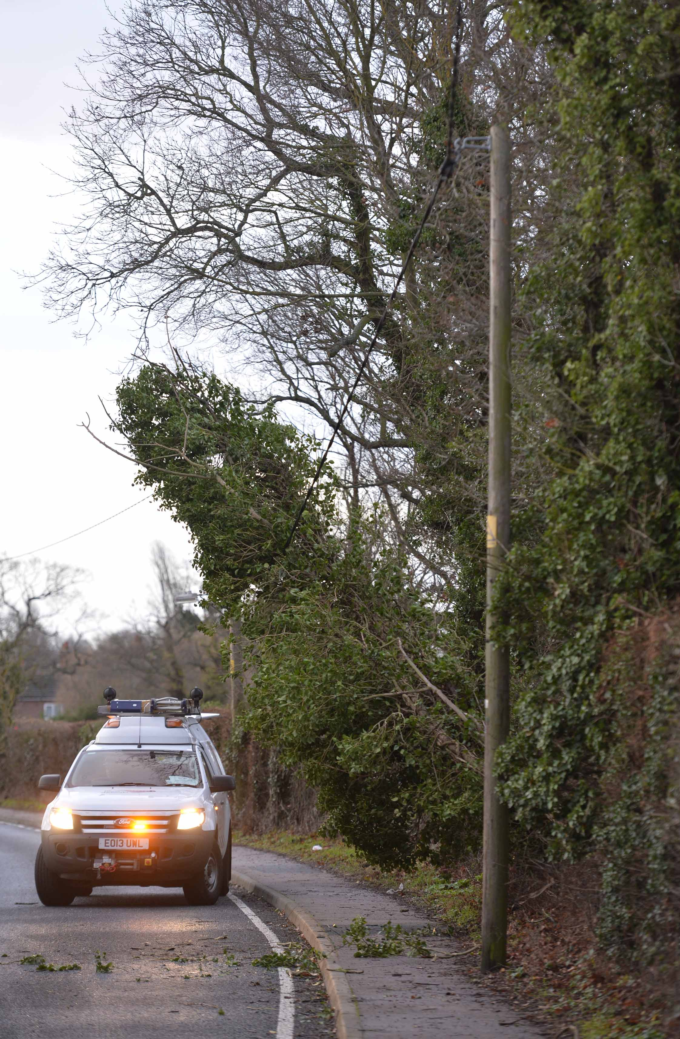 Due to the high winds there are a number of fallen trees across the county, including Station Road in Thorpe, near to the junction of Abbey Street.