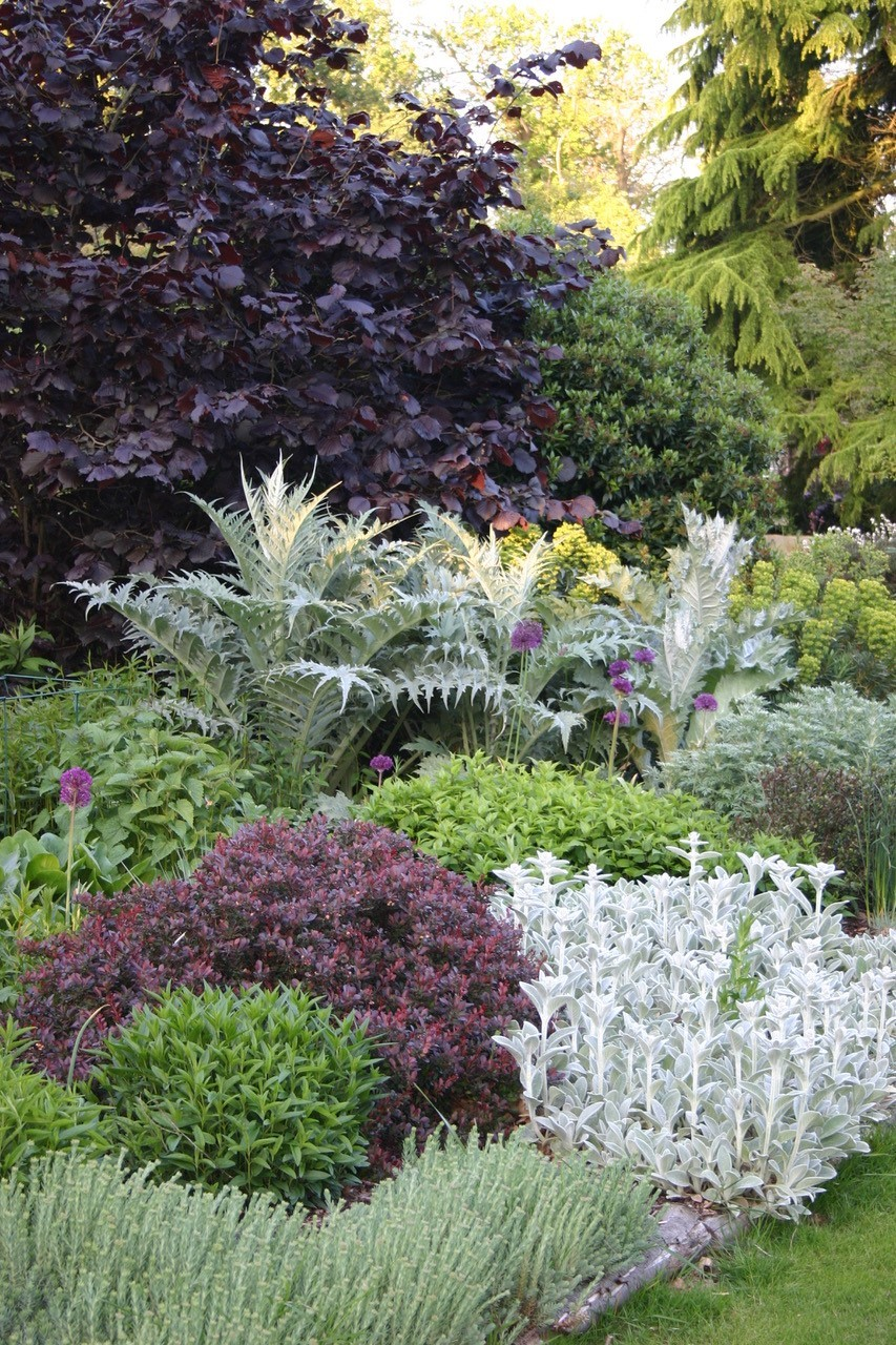 Choosing the right foliage for your garden is crucial