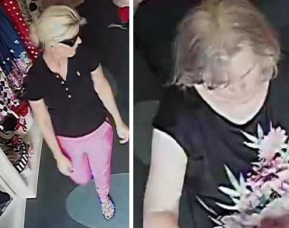 CCTV - police want to speak to these woman after a theft