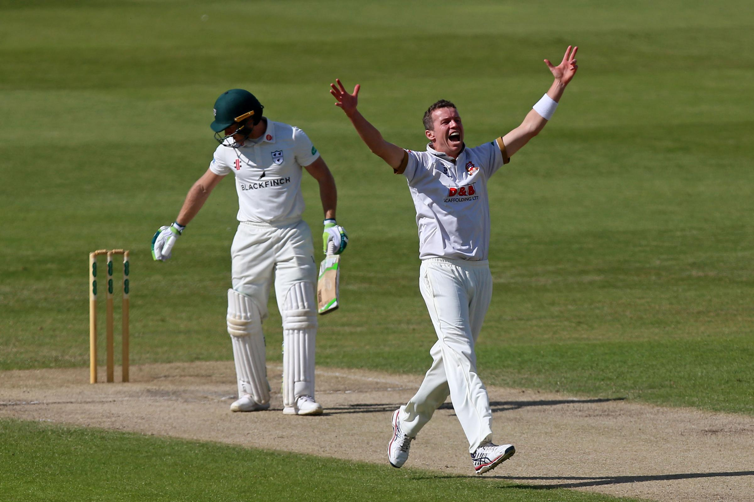 Peter Siddle of Essex celebrates taking the wicket of Ben Cox during Worcestershire CCC vs Essex CCC, Specsavers County Championship Division 1 Cricket at New Road on 13th May 2018.