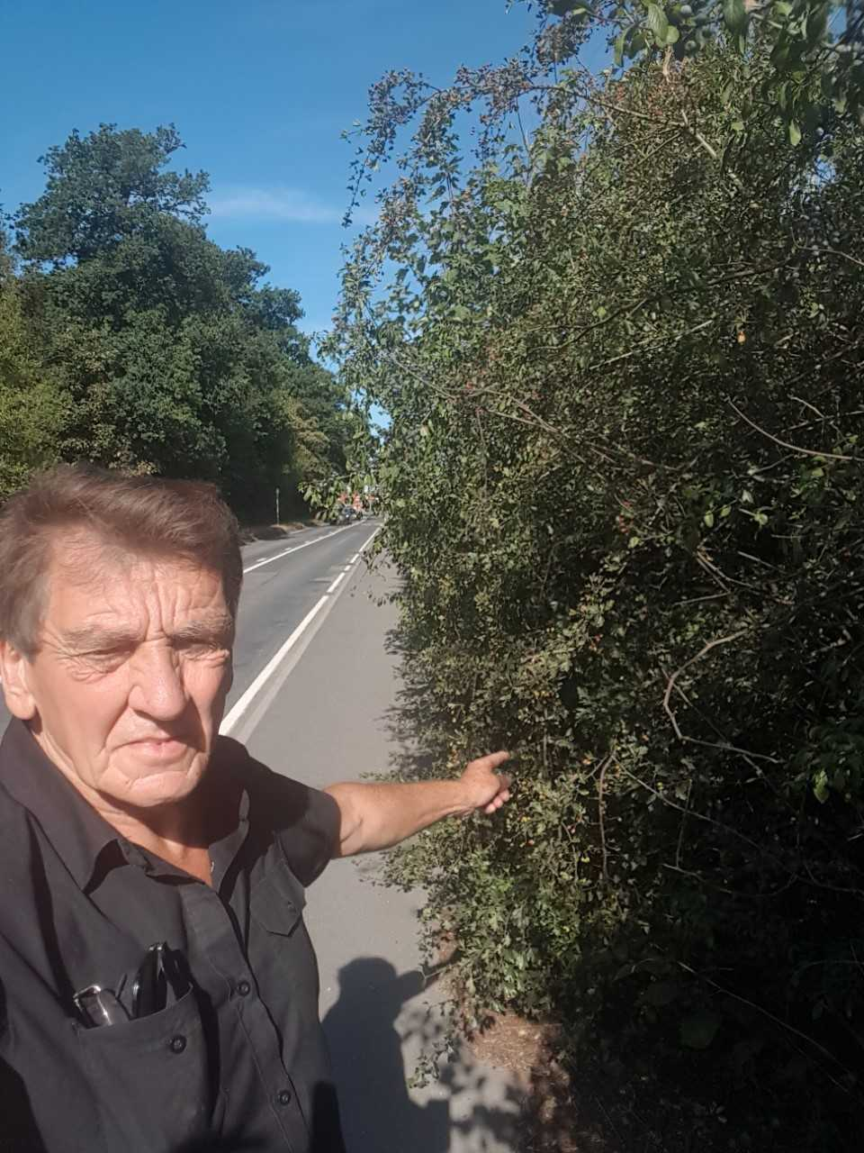 Frustrated - Dave Harris with the overgrown hedges which he says are a hazard