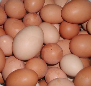 Gazette: Shopkeepers ban youngsters from buying eggs