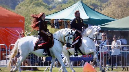 The Weald Park Country Show