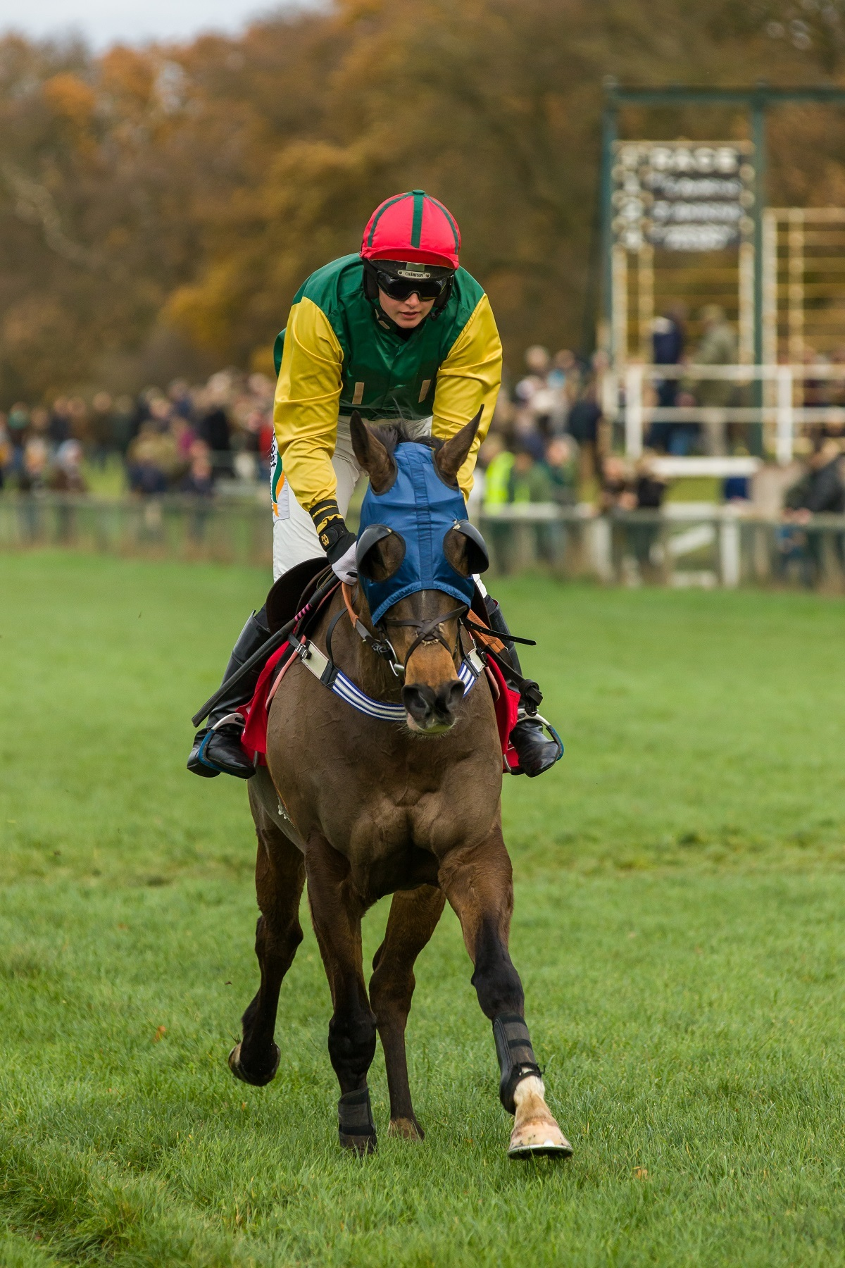 Gina Andrews and Sharp Suit winning the ladies' open race at Cottenham to give her a 200th point-to-point winner. Picture: Graham Bishop Photography