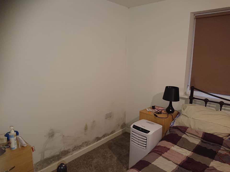 Mould - on the walls of Samantha Cane's main bedroom