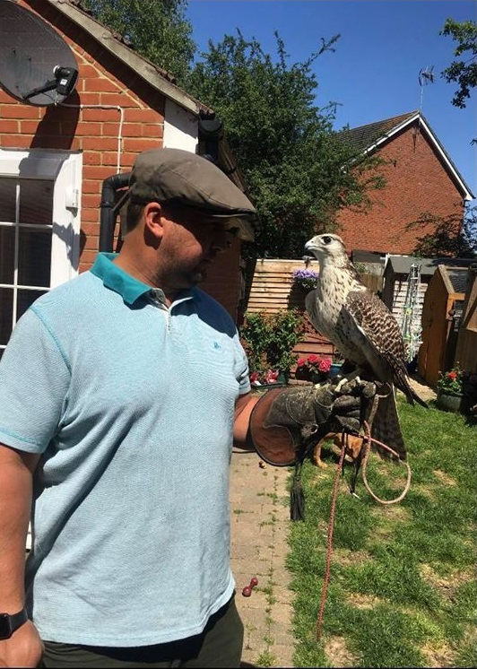 Missing - Jay Poulter with Comet the gyr-saker falcon