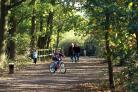 Family attration - High Woods Country Park is a draw for cyclists, runners and walkers.