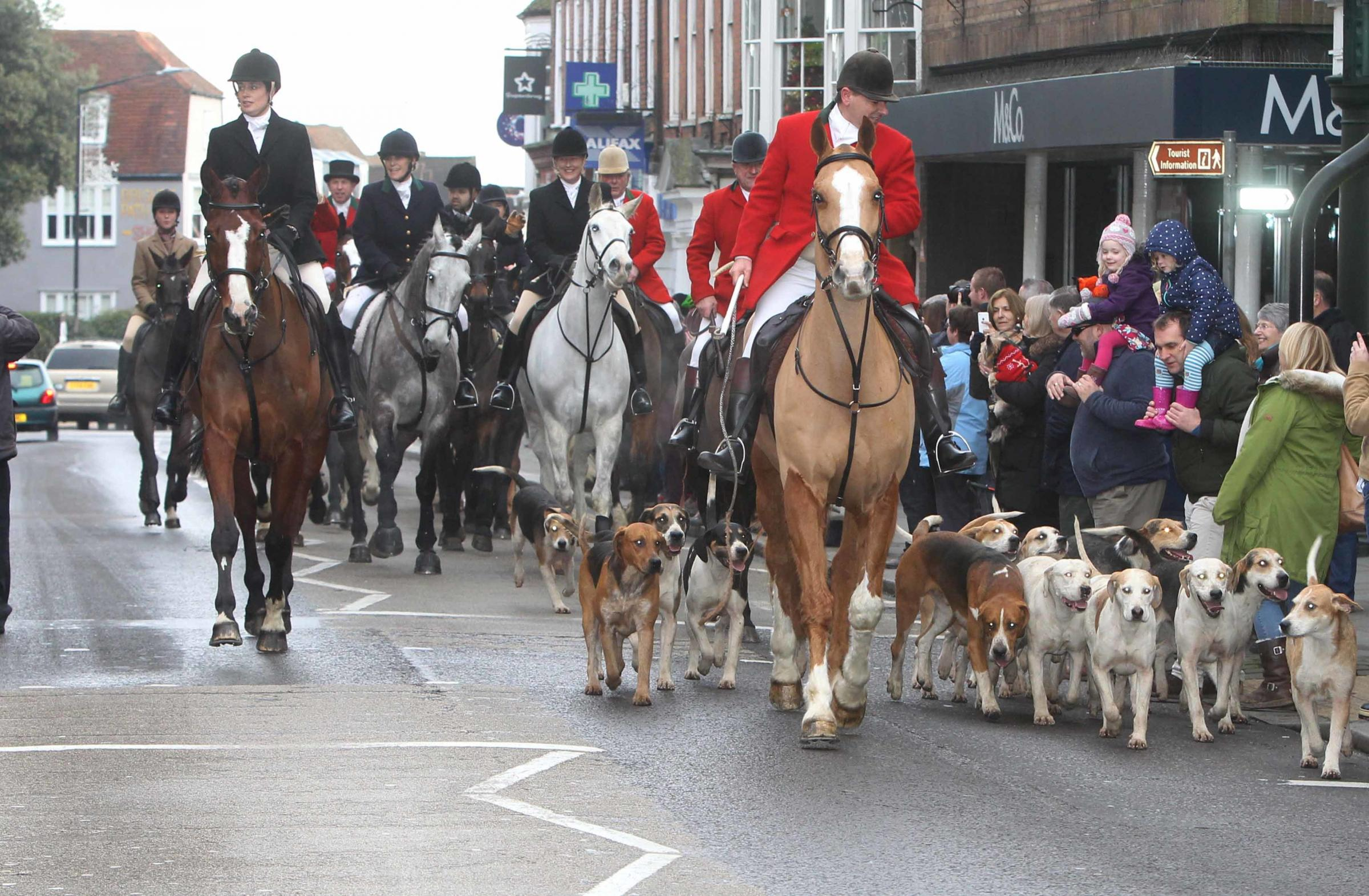 Maldon hunt in Maldon High Street on New Years Day..