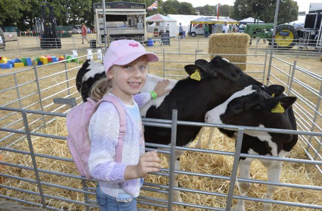 Cancelled - Kelies McElroy at last year's Tendring Show but the leading Essex event will not return this year